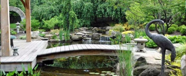 Creating a garden pond pictures and ideas for creative for Creative garden design 805