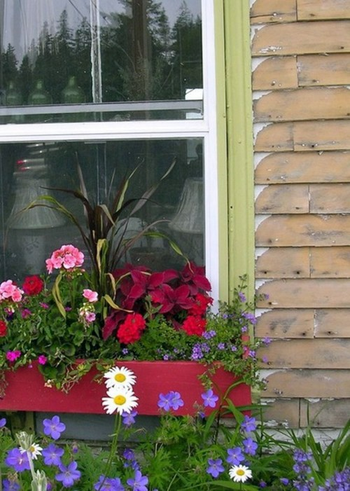 flower-boxes-at-the-windows-in-different-styles-1415191176.jpg