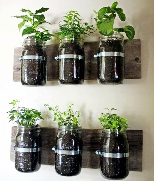 Herb garden ideas for wonderful Feng Shui Kitchen