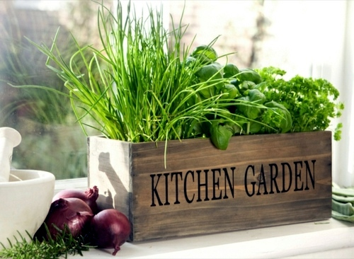 Potted Herb Garden Ideas diy potted herb garden ideas httpherbsandoilshubcomdiy potted Herb Garden Ideas For Wonderful Feng Shui Kitchen