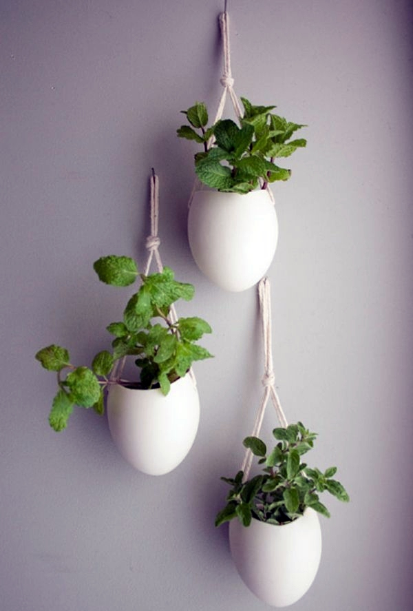 Creative Wall Decoration With Hanging Houseplants Feng Shui Plants For  Harmony And Positive Energy In The Living Room