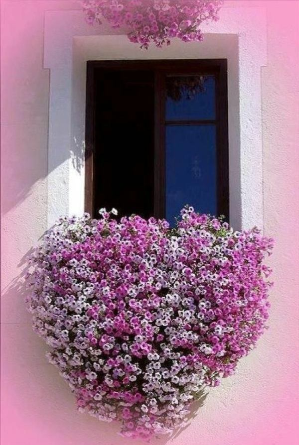 Balcony Flower Boxes Ideas