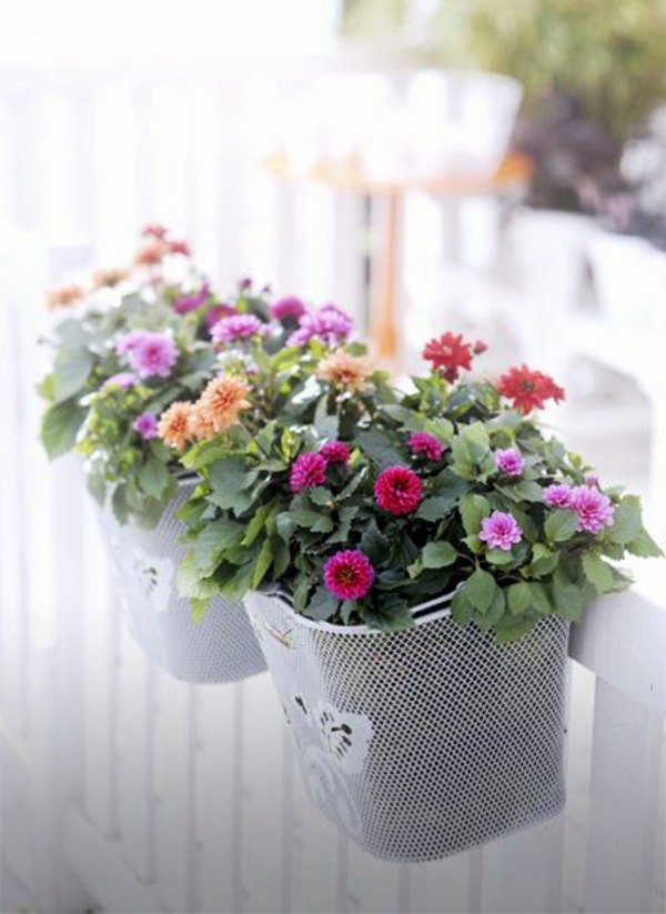 55 Balcony Greenery Ideas Choose Flowers For Balcony And Arrange