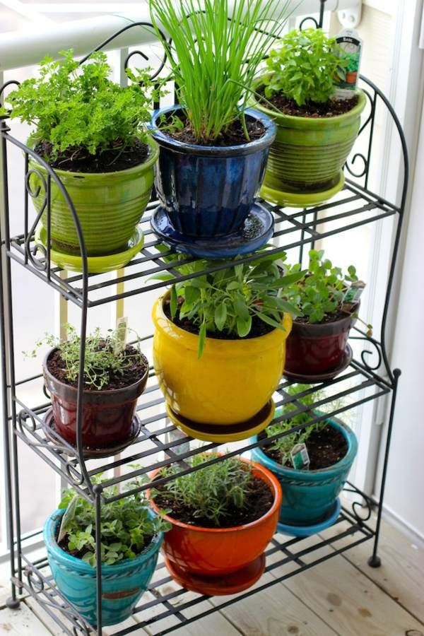 Have always friche herbal hand grasp at home herbal plants interior design ideas avso org - Indoor herb garden containers ...