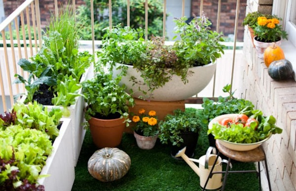 On Balcony Make Hanging Garden Cool Ideas For Small