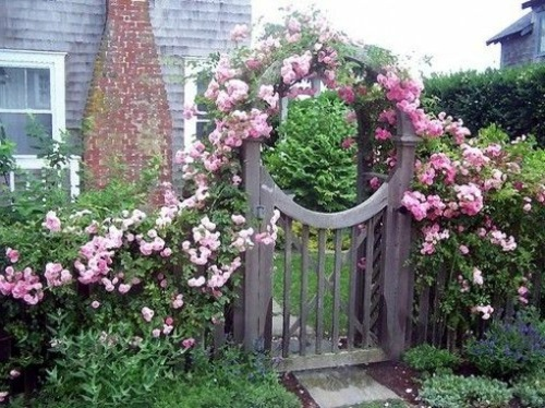 Pink Rose Garden The Garden Gate 70 Fabulous Images For Front Yard Design