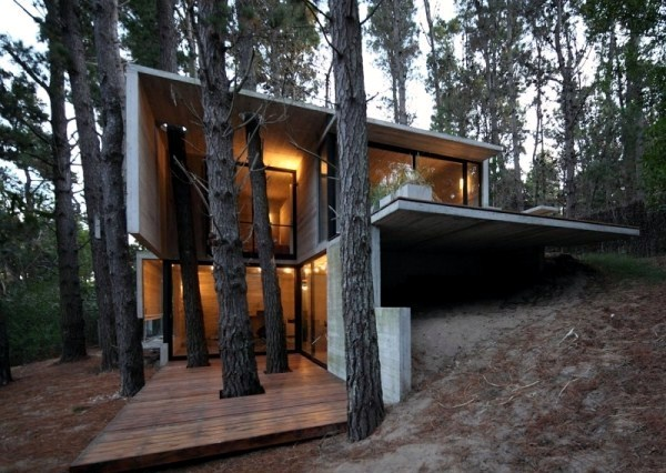 A modern house made of glass and wood on the coast for Modern forest house design