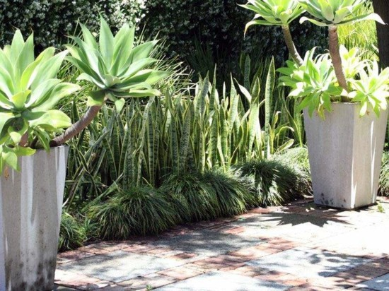 Mediterranean garden this is an achievable goal in for Front garden designs perth