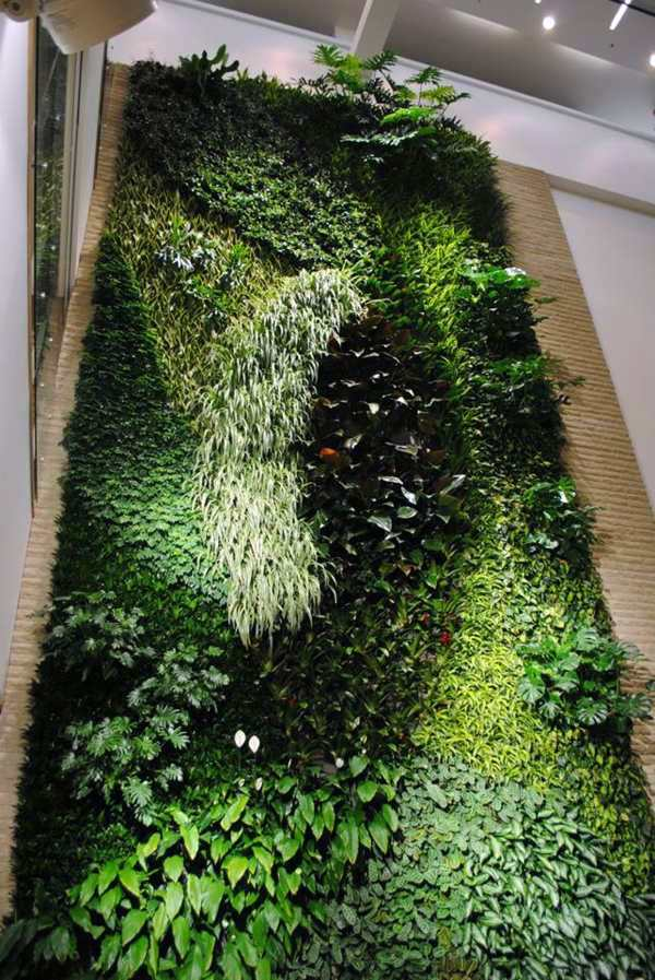 ... Wall Decoration With Plants   Live Picture Refreshes The Air And  Ambience