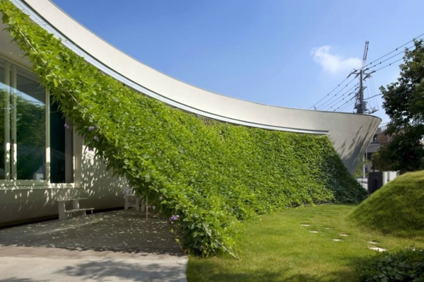 organic house with curved vertical greening interior