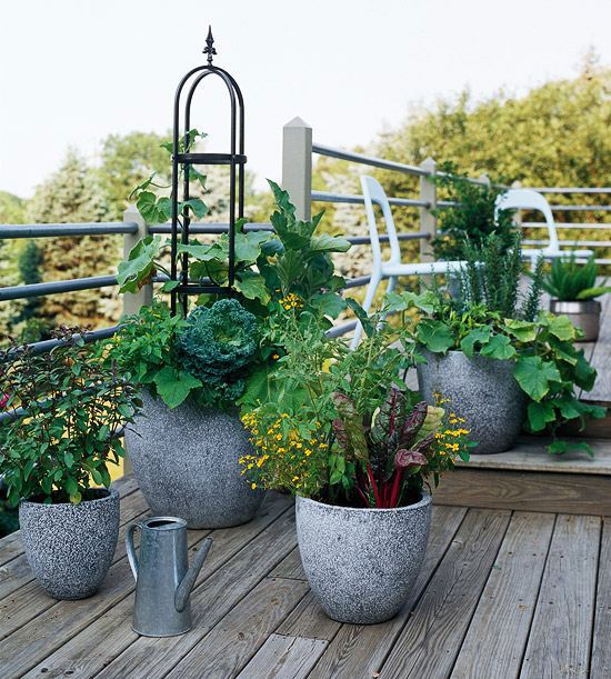 20 Interesting Fresh Ideas For Growing Vegetables In Containers Interior Design Ideas Avso Org