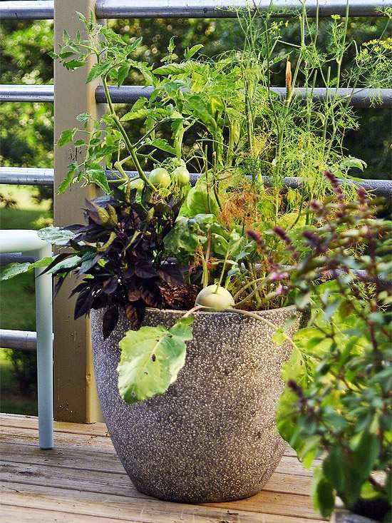 Best 20 Herb Garden Design 2017: 20 Interesting, Fresh Ideas For Growing Vegetables In Containers