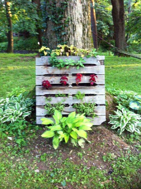Creating a vertical garden and flower - DIY from Euro pallets