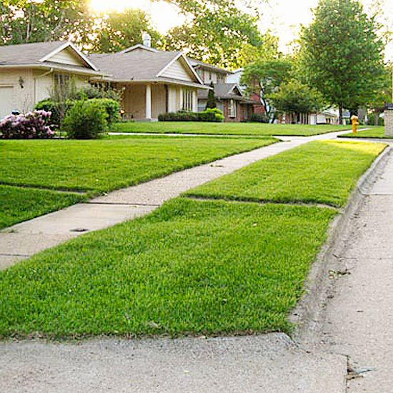 Cool landscaping planting the grass strip in front of for Cool low maintenance plants