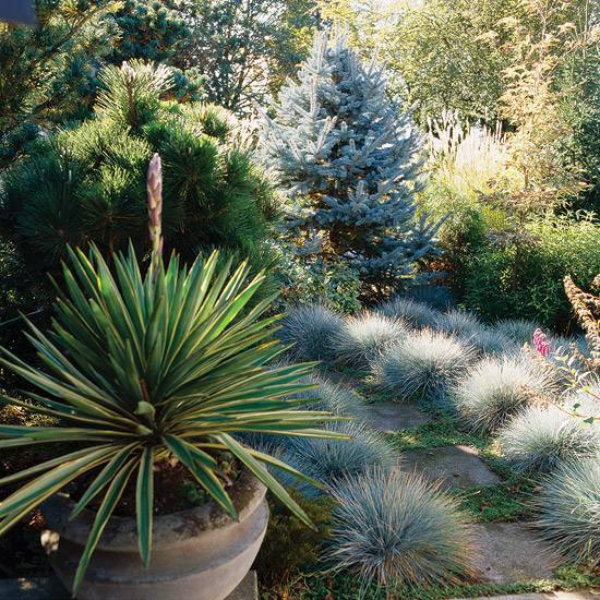 Follow lightweight landscape ideas and rules interior for Low mounding ornamental grasses