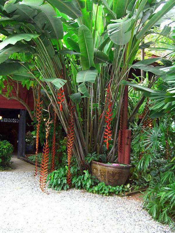 Garden design ideas - photos for Garden Decor