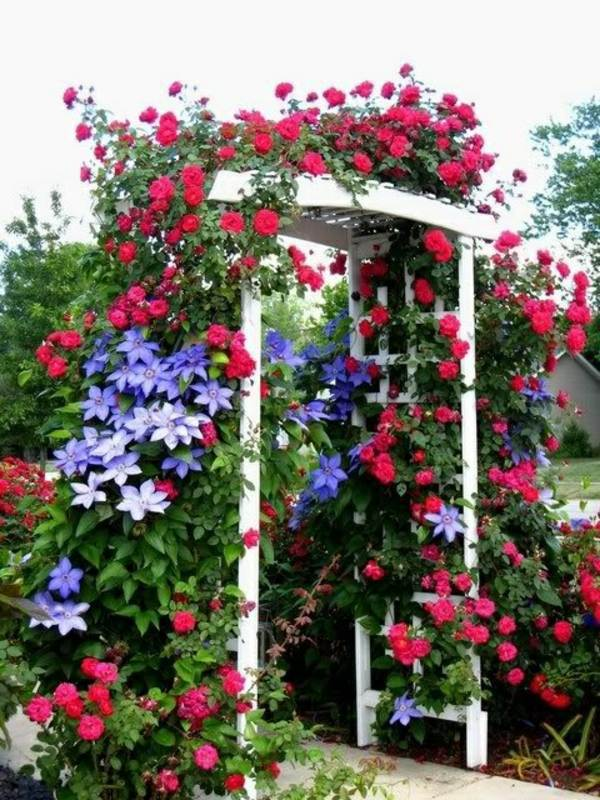 Pergola Shade Sun Protection In The Garden And