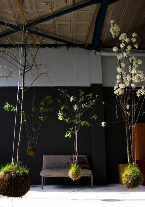 hanging flower pots without trees hanging indoor plants and patio plants hanging plants for the purpose of green house