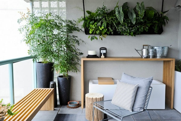 hanging indoor plants and patio for the purpose of green house