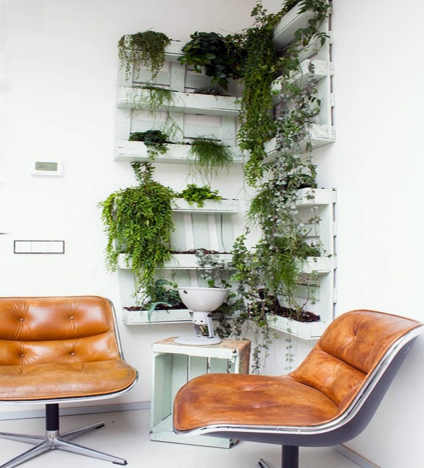 Hanging Indoor Plants And Patio