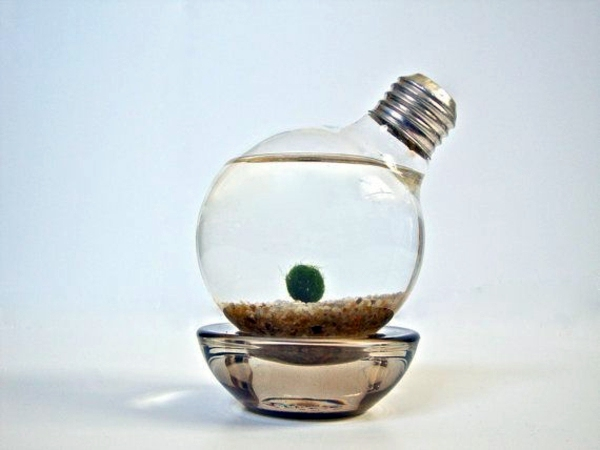Sand, Green And Bulbs DIY Decoration From Bulbs   120 Craft Ideas For Old Light  Bulbs Nice Design
