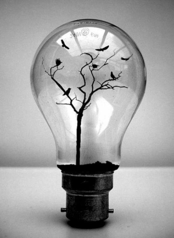 DIY Decoration From Bulbs 120 Craft Ideas For Old Light