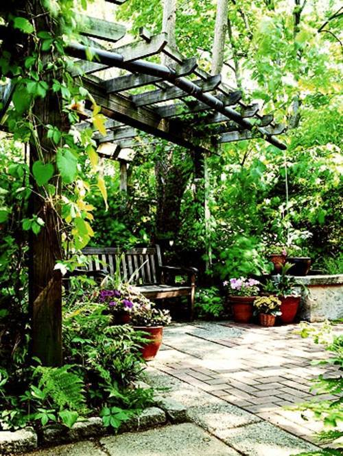When A Mysterious Refuge Create A Shaded Seating Area In The Garden