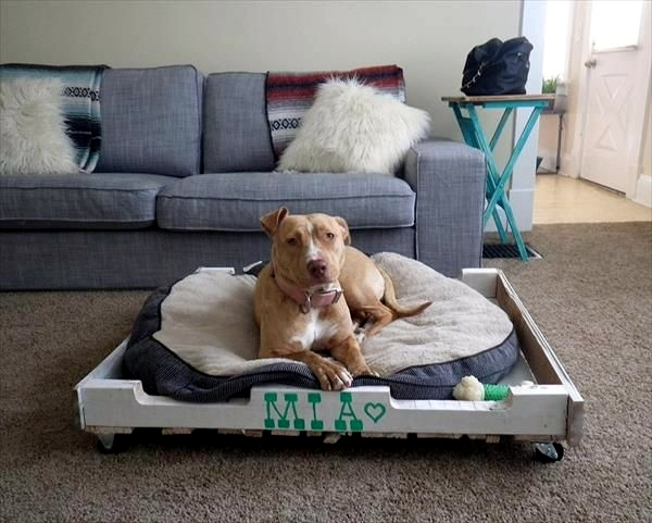 Haustiere - Make great dog beds from Euro pallets themselves - dog beds made of wood
