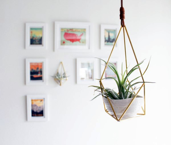 Hanging plants hanging plants container as home for Home interior accessories