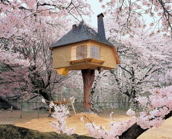 The most beautiful tree houses in the world interior for The most beautiful interior houses