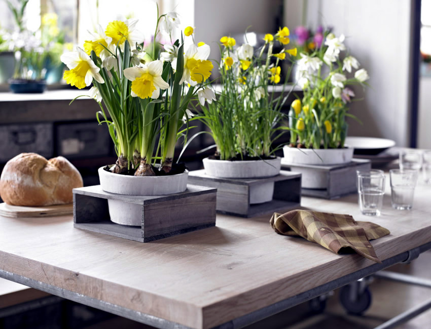 Spring ... : spring table setting ideas - pezcame.com