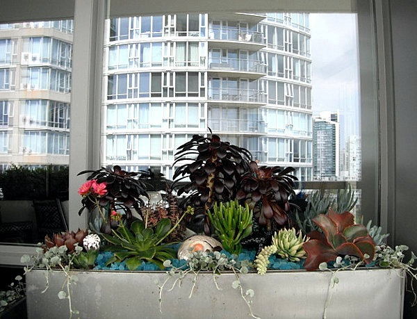 Cool Balcony Decoration Ideas Create Your With