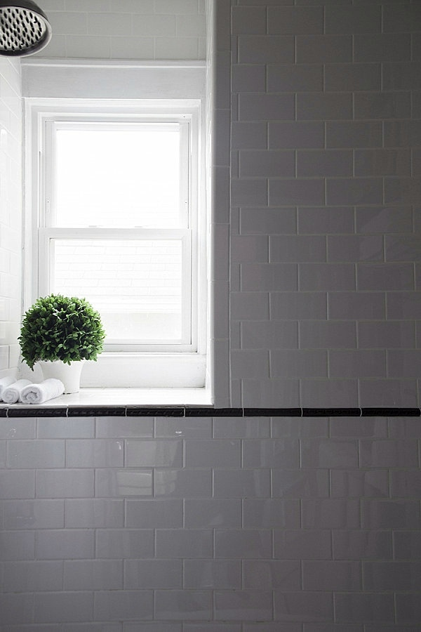 Interior design ideas green houseplants in the bathroom interior design ideas avso org - Houseplants thrive low light youre window sill ...