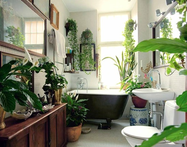 Interior design ideas – green houseplants in the bathroom | Interior ...