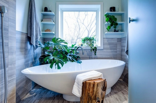 Juicy Houseplants Interior Design Ideas