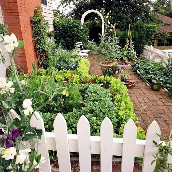 Answers to your top garden questions useful information for Gardening questionnaire
