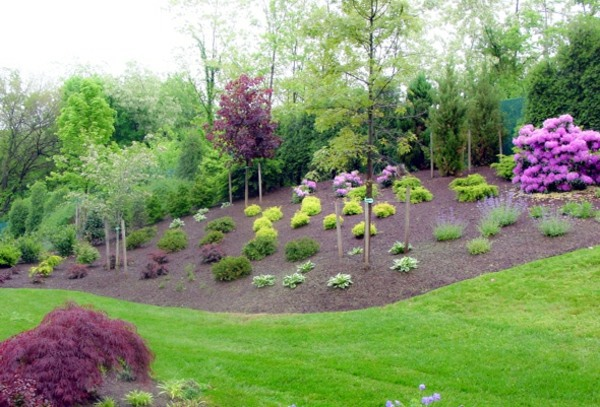 Front Garden Design tips for front yard landscaping ideas front garden design elegant garden design front of With Gravel Front Garden Design Photos And Tips For You