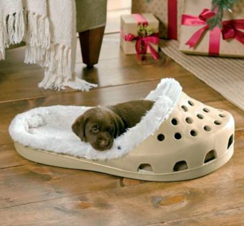 Cool dog bed in shape of a shoe interior design ideas for Cool bed head ideas