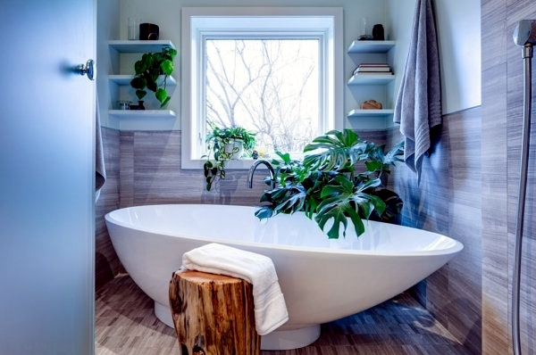 Plants In The Bathroom The Best Suggestions For You Interior