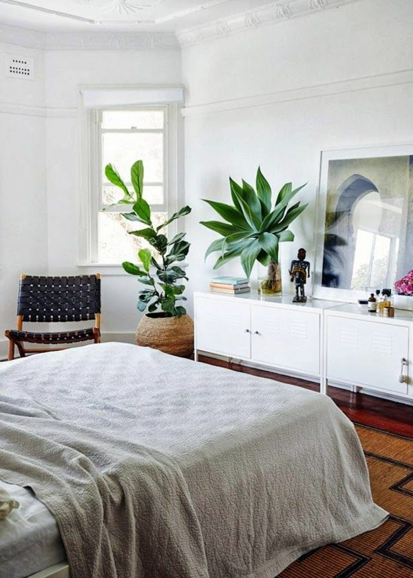 In The Bedroom Schlafzimmer Ideen   Plants In The Bedroom   Potted Flowers,  Which Are Particularly Suitable For