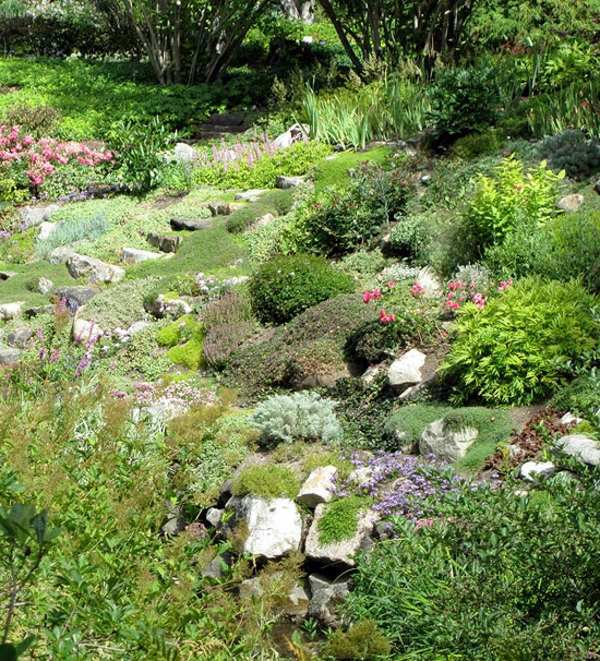 Landscaping With Rocks And Various Plant Species 50 Modern Garden Design  Ideas