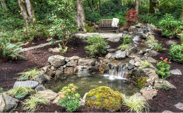 Creating a garden pond pictures and ideas for creative for Creating a landscape