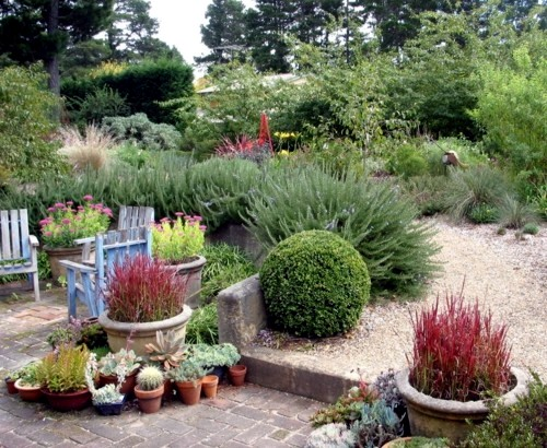 Lush sustainable gardens in Australia who just needs a