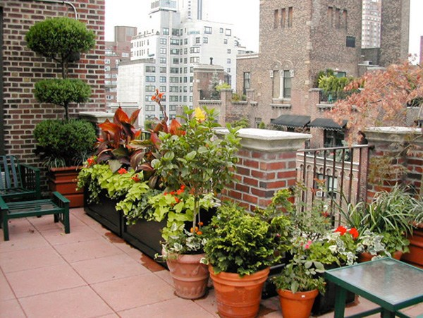 Cool garden design idea – green oasis on the roof terrace