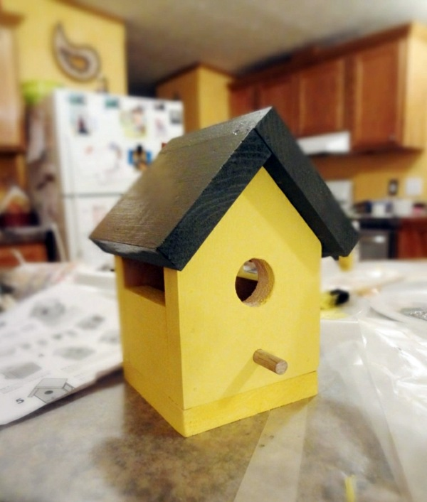 Build bird house itself you contribute to wildlife for Building a quail house