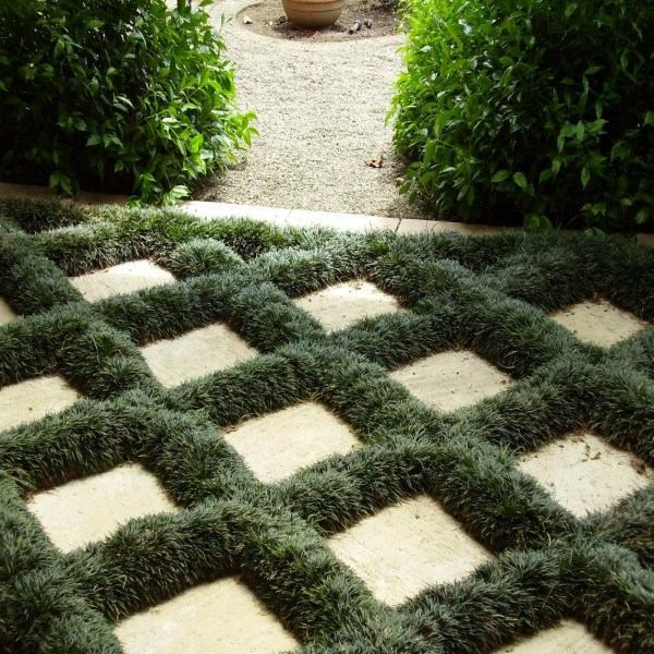 among the stones plant outdoor plants for your shade areas - Plants That Do Well In Shade
