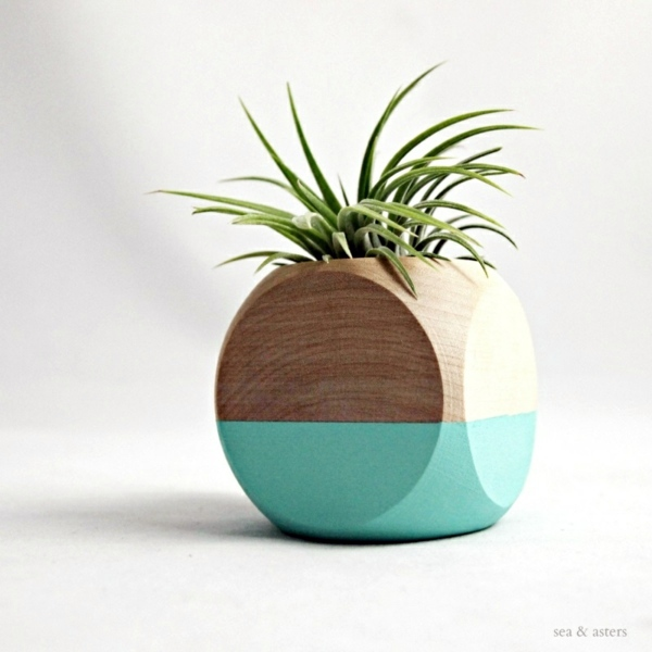 Modern Planters Designed For Air Plants From Experts