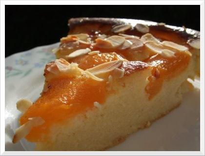 Fresh Apricot Cake Recipes Easy