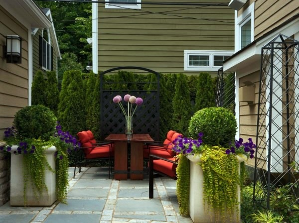 plant encyclopedia outdoor plants for your shade areas interior
