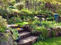 spice-deck-and-garden-design-by-plants-1415783153.jpg